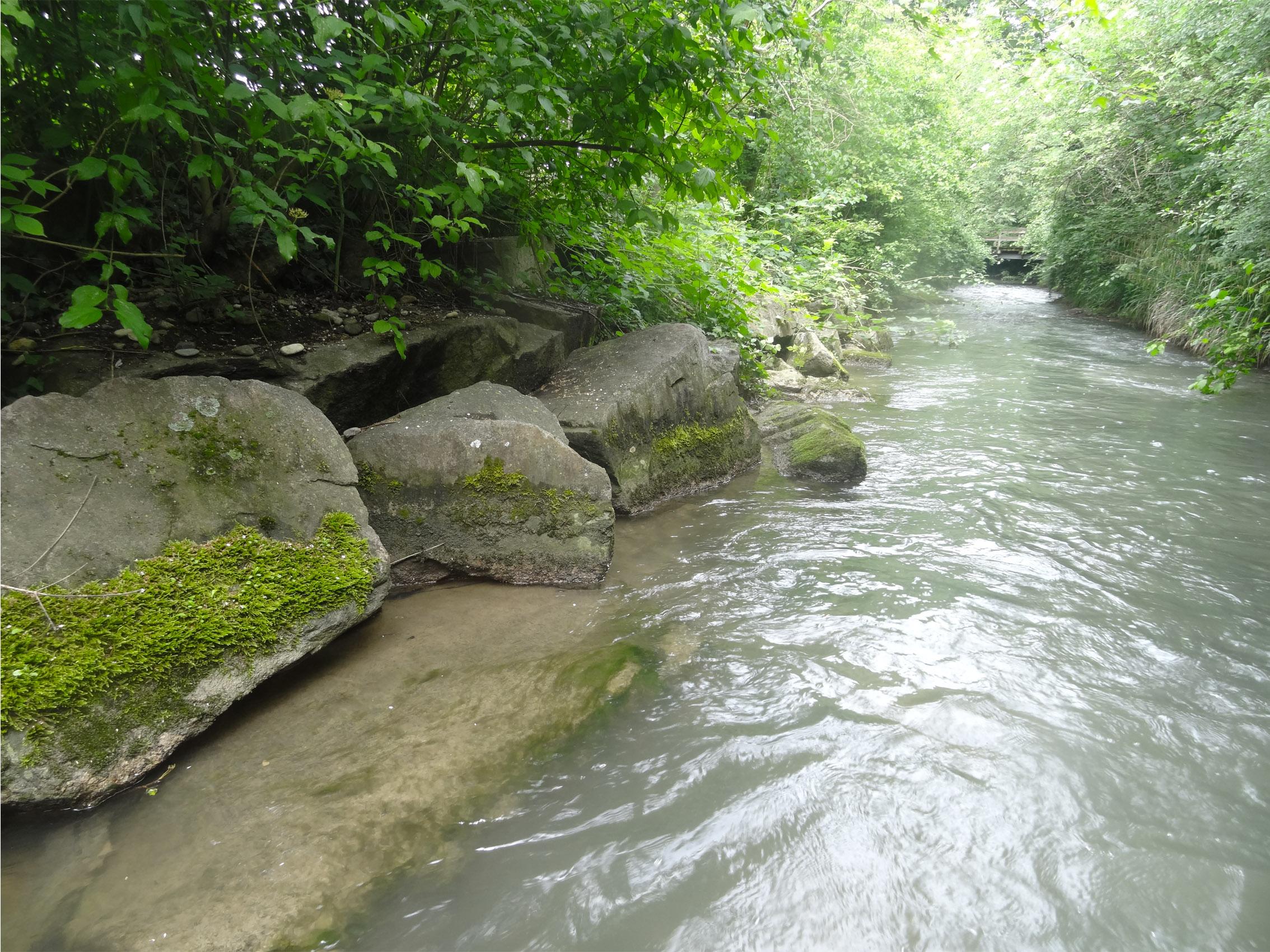Uferverbauung am Sankt Albanteich